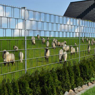 Sichtschutzstreifen Baltrum